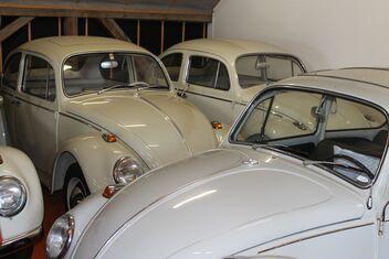 VW vintage car collection