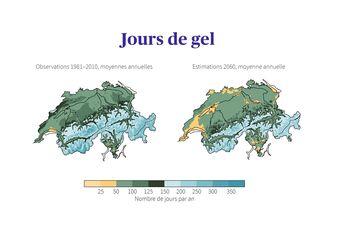 Jours de gel en Suisse: observations au cours de la période de référence 1981–2010, comparées aux estimations intermédiaires pour 2060 sans mesures de protection du climat